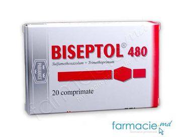 cumpără Biseptol comp. 480mg N20 în Chișinău
