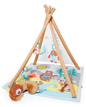 купить Skip Hop Развивающий игровой коврик Camping Cub в Кишинёве