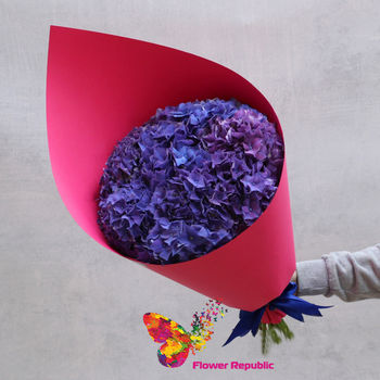 купить Монобукет из 9 гортензий сине-фиолетого оттенка в Кишинёве