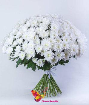 купить Хризантемы кустовые белые поштучно в Кишинёве