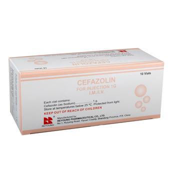 cumpără Cefazolin 1g pulb.sol.inj. N10 în Chișinău