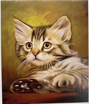 Милый кот, код GB70164