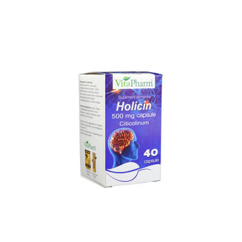 cumpără Holicin 500mg caps. N40 în Chișinău