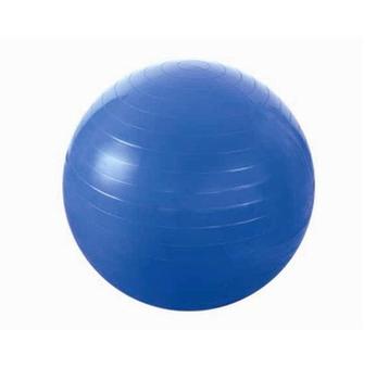 Мяч гимнастический с насосом d=55 см HMS blue (4824)