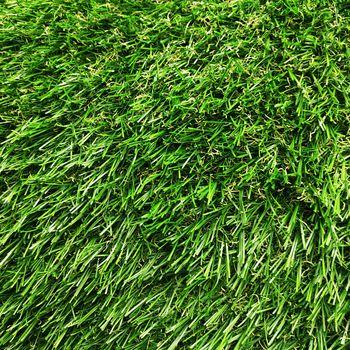 Ландшафтная трава, FLORIDA