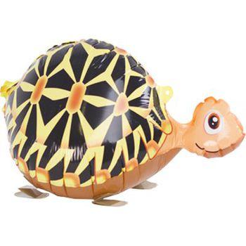 купить Черепаха в Кишинёве