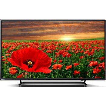 cumpără Televizor TOSHIBA 40L2863DG în Chișinău