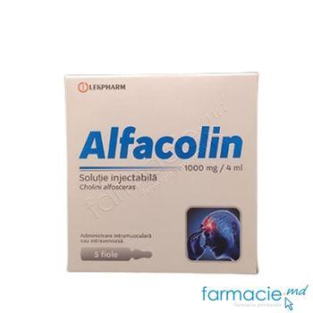 купить Alfacolin sol. inj. 1000 mg/4 ml N5 в Кишинёве