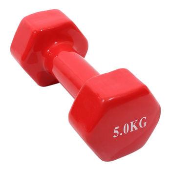 купить Гантель Silapro 5 кг Adult Fitness Training с цветным виниловым покрытием, 191010 в Кишинёве