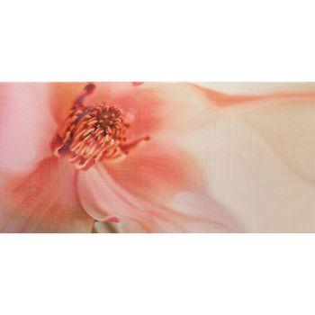Latina Ceramica Декор Irina Rosa 25x50см