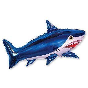 купить Акула в Кишинёве