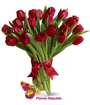 купить Бордовые тюльпанов в Кишинёве
