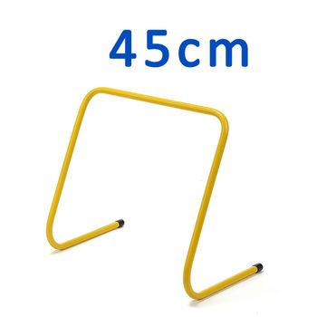 cumpără Obstacole de formare 45 cm 100085 în Chișinău