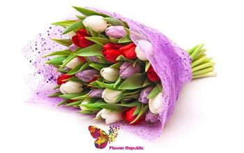 купить Тюльпаны микс в Кишинёве