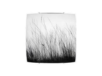 купить Светильник BLACK GRASS 7 1л 5652 в Кишинёве