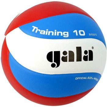 Мяч волейбольный Gala Training 5561 (2019)