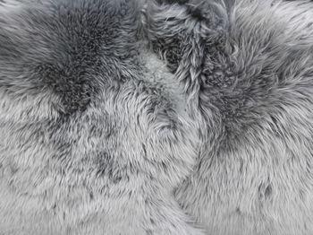 купить Шкура овечья №102GR, серая в Кишинёве