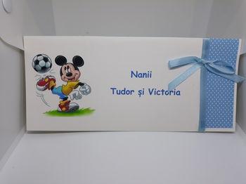 cumpără Plic Nr. 0030 în Chișinău