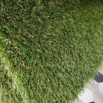 купить Ландшафтная трава, VICTORIA, натуральный цвет в Кишинёве