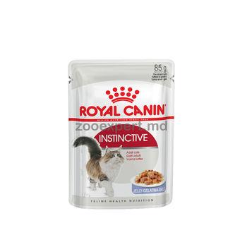 купить Royal Canin INSTINCTIVE (В ЖЕЛЕ) 85 gr в Кишинёве