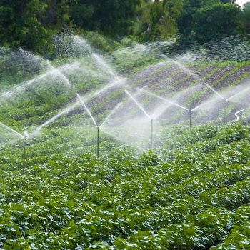 """cumpără Aspersor sprinkler  1""""М ATIGLAN JUNIOR sectoral PLASTIC (30º-360º) 13-25 m/2-5 bar/5-10 m³h (rosu) 3404 M în Chișinău"""