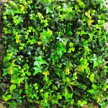 cumpără Perete verde/decorativ Тропический плющ 50сm x 50cm în Chișinău