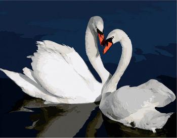 Картина по номерам 40x50 Лебеди в воде VA2662