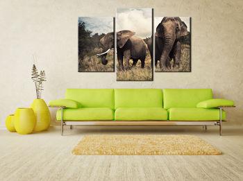 Картина напечатанная на холсте - Картина Триптих Природа 0001 / Печать на холсте
