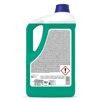 IGIENIC FLOOR GREEN APPLE Средство для мытья полов 5 кг