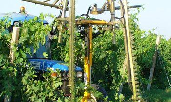 купить Обрезчик для виноградников с режущими полотнами CFT2/600 - Оризонти в Кишинёве