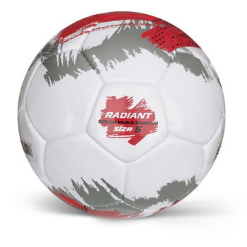 купить Мяч матчевый футбольный Alvic Radiant N5 (497) в Кишинёве