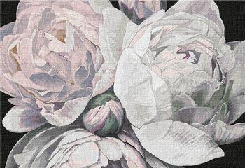 Картина по номерам 50x65 см Краски пиона 13114