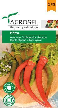 купить Семена  Перец острый Pintea 1gr, AS в Кишинёве