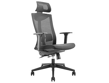 Lumi Premium High-Back Mesh Office Chair CH05-8, Black, Height Adjustable Armrest, Adjustable Lumbar Cushion, Adjustable Headrest, Adjustable Tilt Back, Seat-Depth Adjustment,340mm Nylon Base, 60mm P