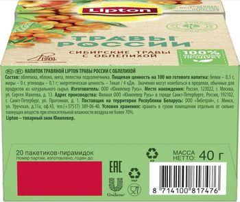 купить Lipton Травы России травяной чай в пирамидках с облепихой, 20 шт в Кишинёве