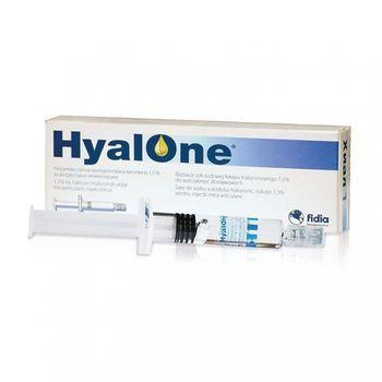 cumpără Hyalone 60mg/4ml inj. pre-filled ser. N1 în Chișinău