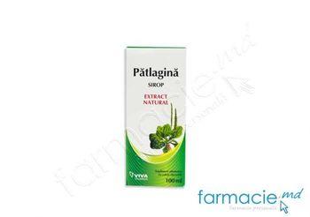 купить Patlagina sirop 100 ml VivaPharma в Кишинёве