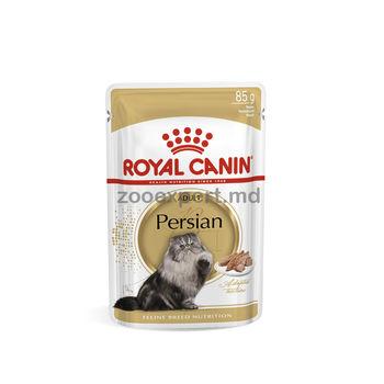 купить Royal Canin ADULT PERSIAN (В ПАШТЕТЕ) 85 gr в Кишинёве