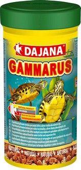 купить Dajana Gammarus 1 L в Кишинёве