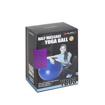 Мяч гимнастический с насосом d=55 см HMS 17-42-130 violet (4827)