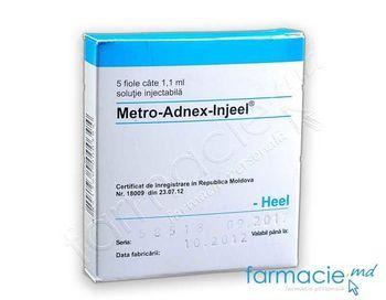 купить Meтро-Aднекс-Инжел р-р.д/ин. 1.1мл N5 в Кишинёве