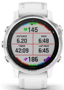 Смарт-часы Garmin fenix 6S Silver/White