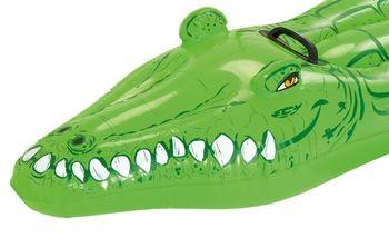 купить Надувной крокодил 168х79см в Кишинёве
