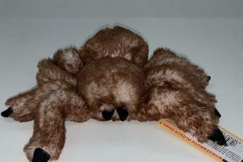 Spider 23x21 cm, cod 42046