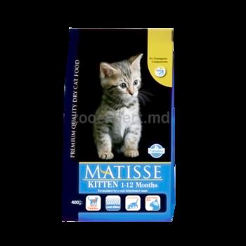 cumpără Matisse Kitten în Chișinău