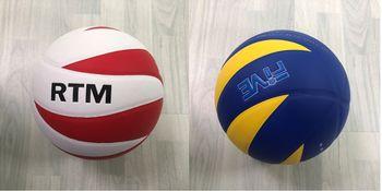 купить Мяч волейбольный в Кишинёве
