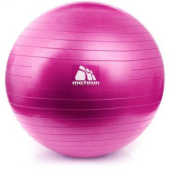 купить Мяч гимнастический d=55 см с насосом Meteor 31132 (367) в Кишинёве