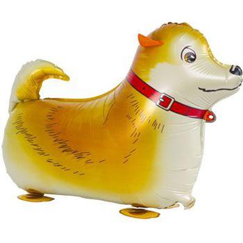 купить Собака Рыжая в Кишинёве