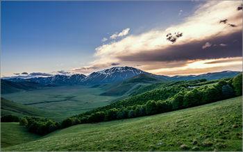 Картина напечатанная на холсте - Картина Природа 0005 / Печать на холсте