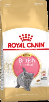 cumpără Royal Canin BRITISH SHORTHAIR KITTEN 400 gr în Chișinău